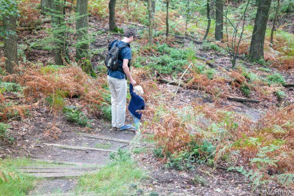 Dagje uit met kinderen: The Nature Game – een spannende tocht over de Veluwe